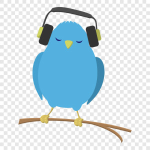 Enlightening Music Bluebird